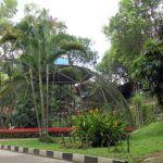 Koleksi Satwa Taman Kyai Langgeng
