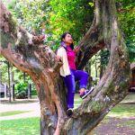 Wit Bolong Obyek Wisata Taman Kyai Langgeng